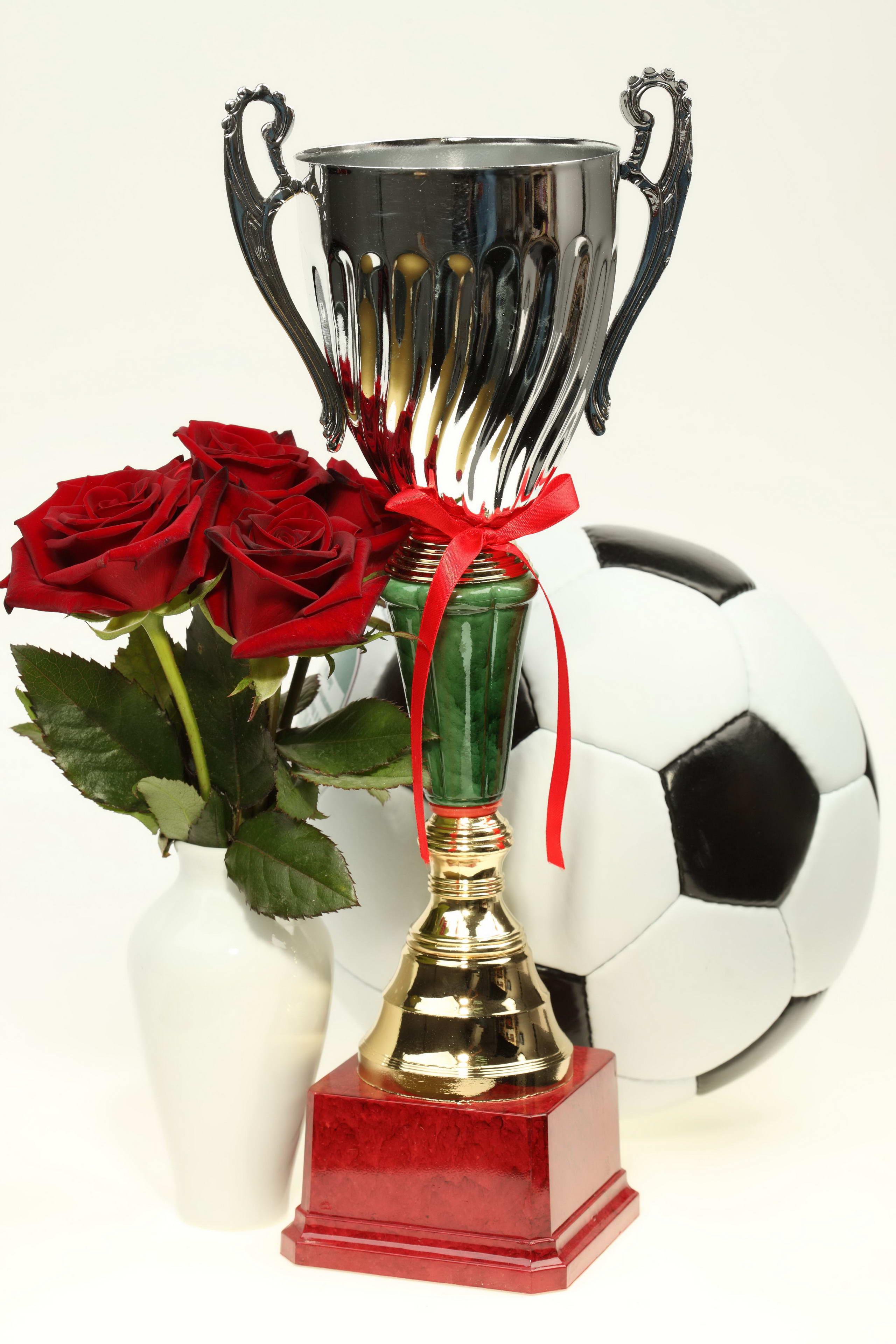 Поздравление с победой в конкурсе, спортивных соревнованиях, олимпиаде 65